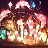 Lantern Displays