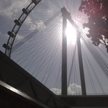 Singapore Flyer  (taken with N95 8GB)
