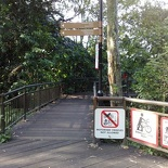 you will see this the start of the tree top canopy walk