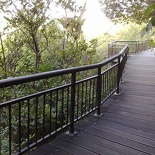 it's like one of the mangrove trail walks, only like wayyy much higher