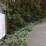 Most people will just park their car at the free carparks here and head off the other direction towards Hortpark itself