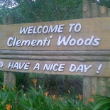 we will leave Clementi woods for now...