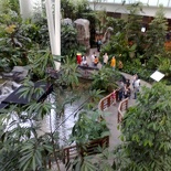 The Yakult garden, from the 2nd floor entrance