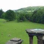 Overlooking a field of grazers