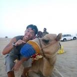 Omftfg Camels?