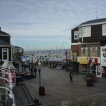 the marina by the pier