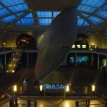 Omg, the Milstein Ocean Hall's grand!