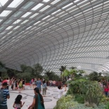 inside the flower dome