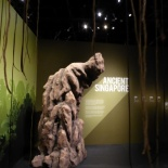700 years singapore museum 07