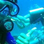 Dayang scuba gilldivers 2015 13