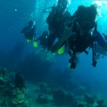 Dayang scuba gilldivers 2015 37