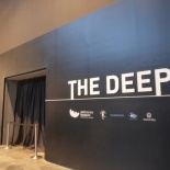 The Deep Exhibition 46