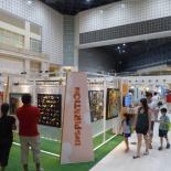 SG50 Youth Festival Art 16