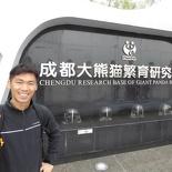 chengdu panda research 130