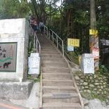 taiwan-elephant-hill-24