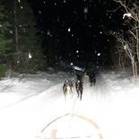 norway-tromso-husky-sledding-022