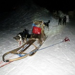 norway-tromso-husky-sledding-011