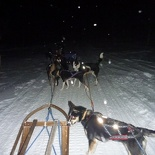 norway-tromso-husky-sledding-014