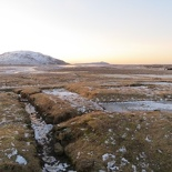 iceland-golden-circle-059