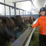 iceland-horse-ride-024