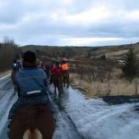 iceland-horse-ride-047