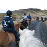 iceland-horse-ride-057