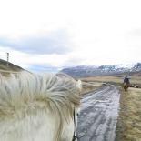 iceland-horse-ride-067