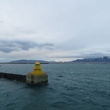 iceland-whale-watching-034