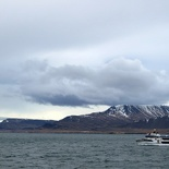 iceland-whale-watching-042