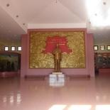 vietnam-dmz-17-031