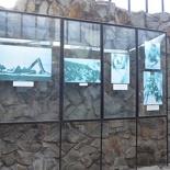 hochiminh-war-remants-museum-027