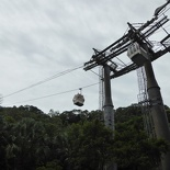 taipei-maokung-hill-gondola-tea-92