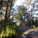 mt-dandenong-skyhigh-sunset-02