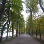 peterhof-grand-palace-064