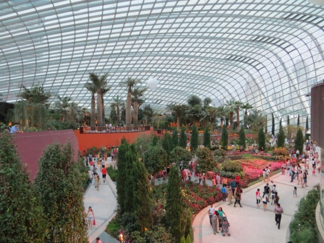 Inside the Flower Dome Conservatory.