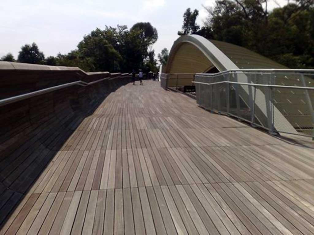 Southern ridges park connector walk - The Marang Trail